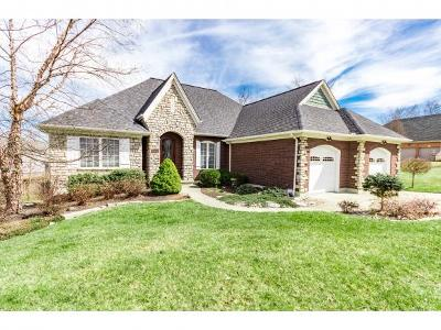 Lawrenceburg, Aurora, Bright, Brookville, West Harrison, Milan, Moores Hill, Sunman, Dillsboro Single Family Home For Sale: 22336 Nevada Ct