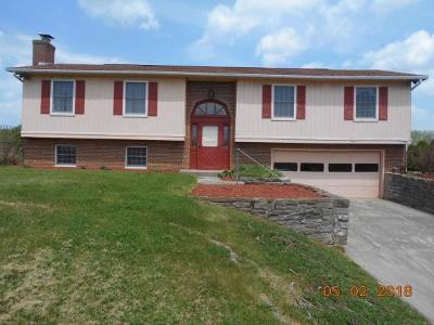 Rising Sun Single Family Home For Sale: 1028 Sr 262