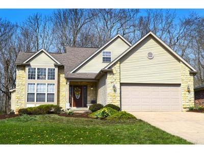 Lawrenceburg Single Family Home For Sale: 20383 Alpine Dr