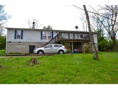 Aurora Single Family Home For Sale: 11191 Bone Hollow Ln