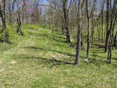 Lawrenceburg Residential Lots & Land For Sale: Longview Dr