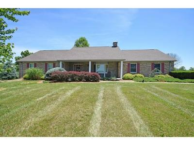 Dillsboro Single Family Home For Sale: 1603 S Cr 750 E