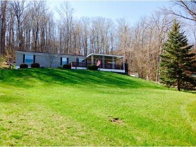 Patriot Single Family Home For Sale: 9957 Sr 156