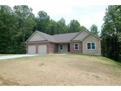 Lawrenceburg Single Family Home For Sale: 24112 Grubbs Ln