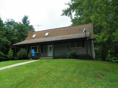 Brookville Single Family Home For Sale: 17057 Cane Mill Rd