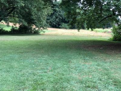 Ohio County Residential Lots & Land For Sale: 622 Fifth St