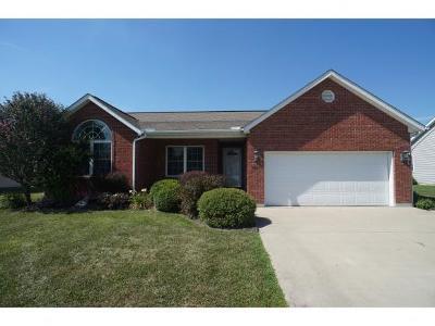 Batesville Single Family Home For Sale: 4507 E Pierson Rd