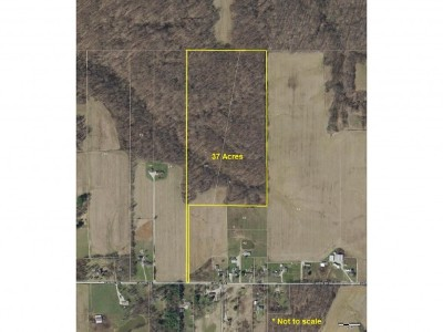 Brookville Residential Lots & Land For Sale: 37 Laurel Road