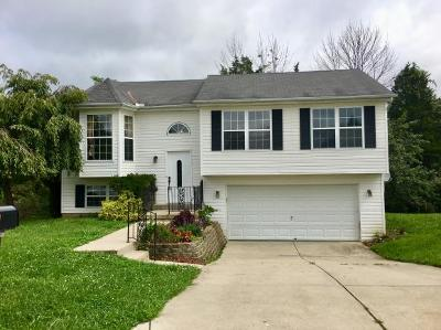Lawrenceburg Single Family Home For Sale: 173 Hardwood Ridge Rd