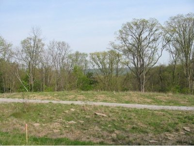 Lawrenceburg Residential Lots & Land For Sale: Augusta Dr