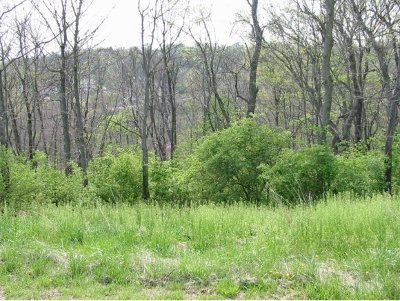 Lawrenceburg Residential Lots & Land For Sale: Augusta Drive