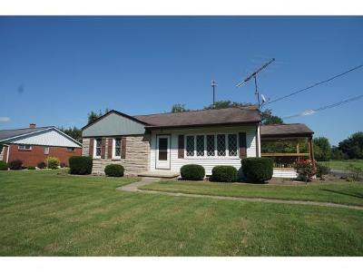 Batesville Single Family Home For Sale: 234 N Township Line Rd