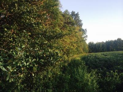 Brookville Residential Lots & Land For Sale: Breeze Wood Drive