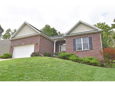 Lawrenceburg Single Family Home For Sale: 20311 Alpine Dr