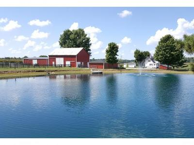 Sunman Single Family Home For Sale: 28832 Blue Creek Rd