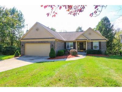Lawrenceburg Single Family Home For Sale: 531 Hawthorne Hts