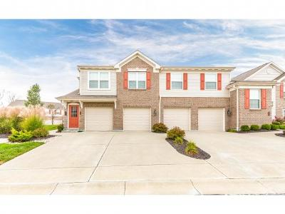 Lawrenceburg Single Family Home For Sale: 301 Westwind Lane