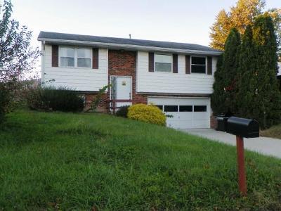 Batesville Single Family Home For Sale: 221 Pheasant Run Dr
