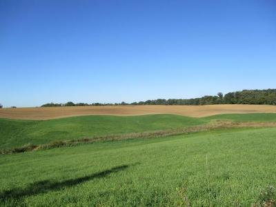 Dearborn County Residential Lots & Land For Sale: Burtzelbach Rd