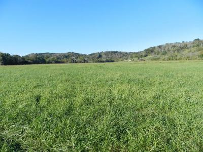 Dearborn County Residential Lots & Land For Sale: Hueseman Rd