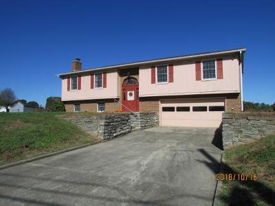 Ohio County Single Family Home For Sale: 1028 Sr 262