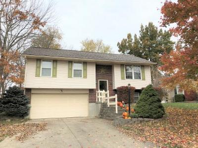 Lawrenceburg Single Family Home For Sale: 1716 Liebchen Ct