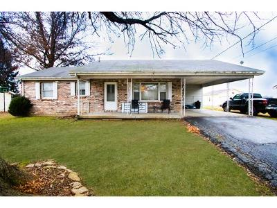 Ohio County Single Family Home For Sale: 928 Burgess Ave