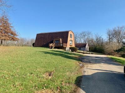 Lawrenceburg Single Family Home For Sale: 22494 State Line Rd