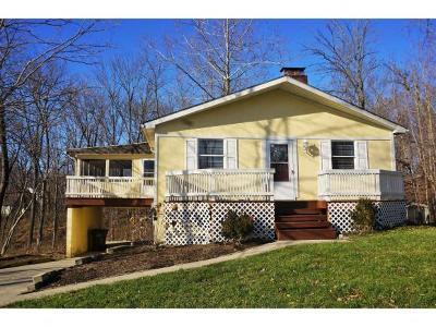 Harrison, Lawrenceburg Single Family Home For Sale: 1294 Skyview Cir