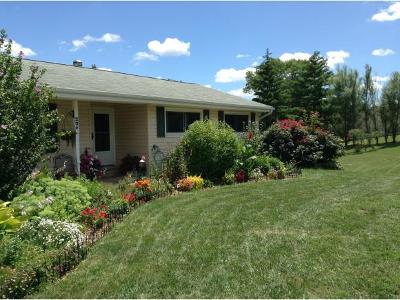 Aurora Single Family Home For Sale: 205 Pleasantview Dr