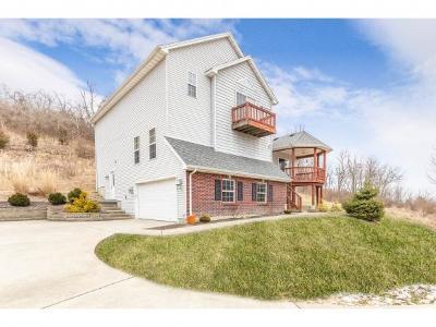 Lawrenceburg Single Family Home For Sale: 19366 Alpine Dr