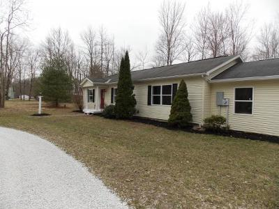 Lawrenceburg, Aurora, Bright, Brookville, West Harrison, Milan, Moores Hill, Sunman, Dillsboro Single Family Home For Sale: 17161 Sonny Shana Ln