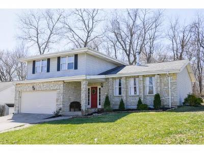 Lawrenceburg Single Family Home For Sale: 20359 Alpine Drive