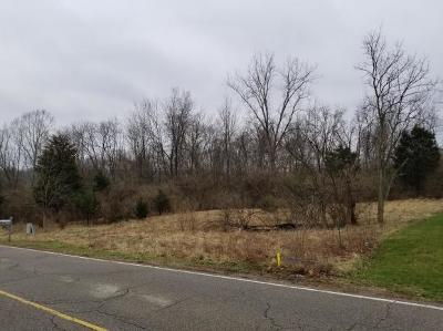 Hidden Valley Residential Lots & Land For Sale: 1553 Longview Drive
