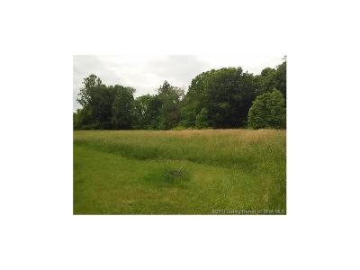 Residential Lots & Land For Sale: 355 N Naugle Lane