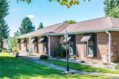Georgetown Single Family Home For Sale: 1207 Dant Drive