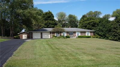 Washington County Single Family Home For Sale: 575 S Paynter Lane