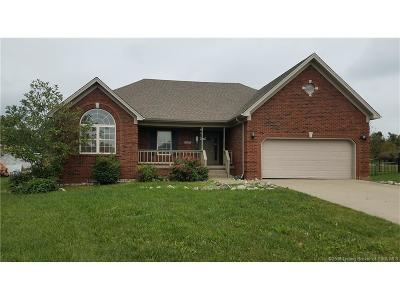 Clark County Single Family Home For Sale: 8517 Brodie Court