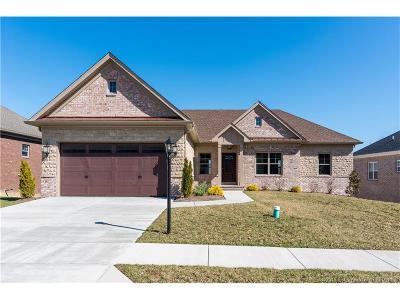 Floyd County Single Family Home For Sale: 711 Vine Leaf Trail