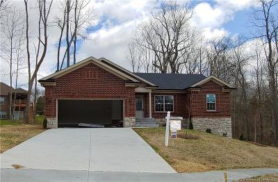 Floyd County Single Family Home For Sale: 1007 Freedom Court Lot 166