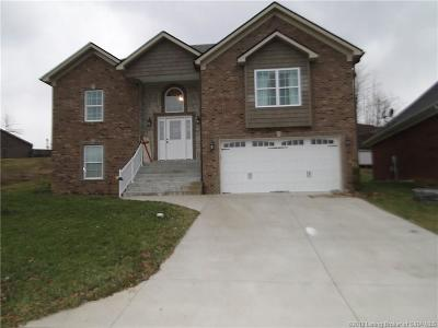 Clark County Single Family Home For Sale: 13115 Sunnybrook Drive