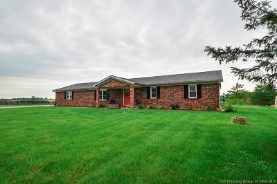 Washington County Single Family Home For Sale: 358 S Bata Road