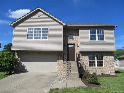 Clark County Single Family Home For Sale: 2211 Freedom Circle