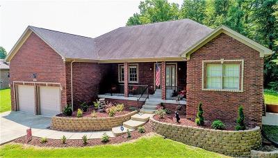Clark County Single Family Home For Sale: 13101 Deer Lake Drive