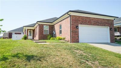 Clark County Single Family Home For Sale: 7620 Julia Drive
