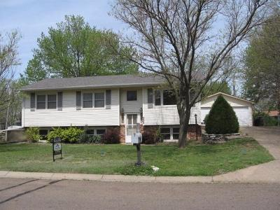 Dickinson County Single Family Home For Sale: 302 Summit Drive