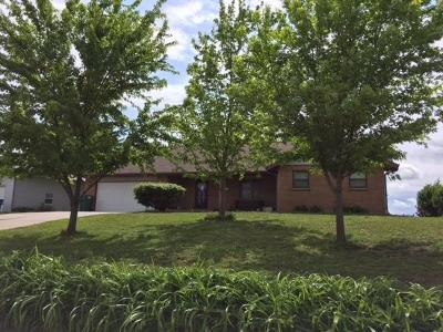 Milford Single Family Home For Sale: 1027 Lakeview Drive