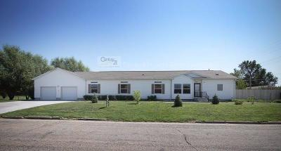 Chapman Single Family Home For Sale: 628 Sheeran Avenue