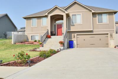 Junction City Single Family Home For Sale: 1830 Buckshot Dr