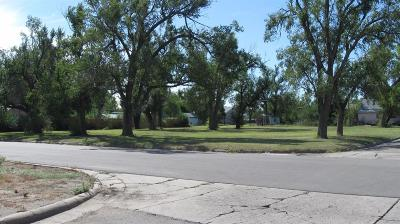 Great Bend KS Commercial For Sale: $35,000